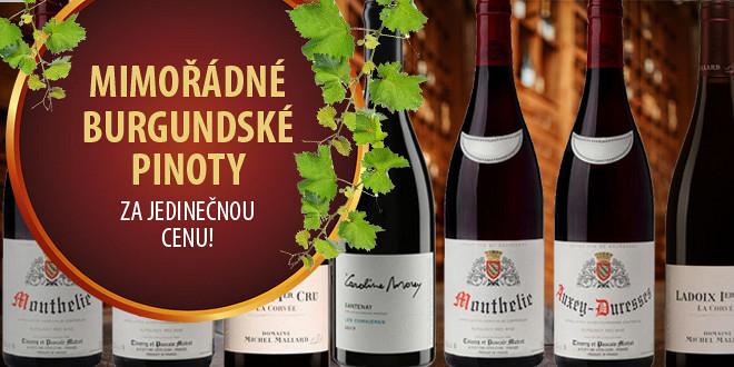 Mimořádné burgundské Pinoty z méně známých apelací